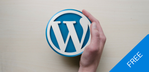 Creating a Business Website in WordPress - Getting Started