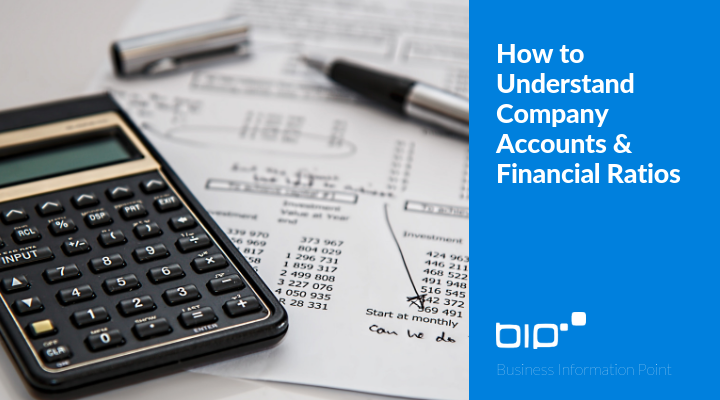How to Understand Company Accounts & Financial Ratios